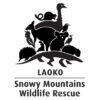 LAOKO_logo_web