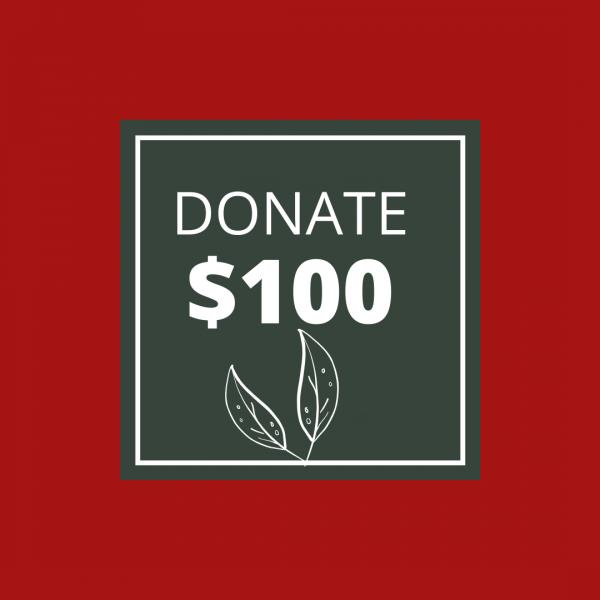 BUSHFIRE APPEAL: DONATE $100