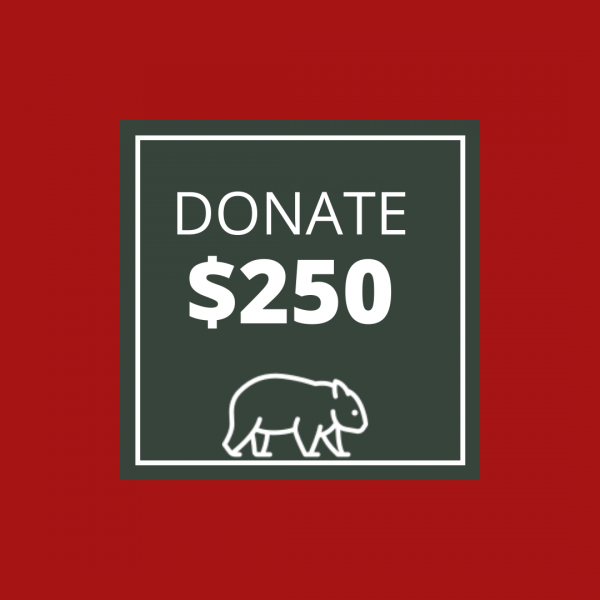 BUSHFIRE APPEAL: DONATE $250