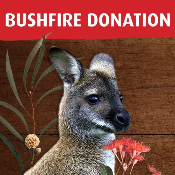 Donate to Kosciusko wildlife bushfire relief
